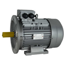 IE1 Elektromotoren, 1000 RPM