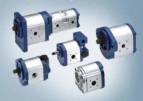 Bosch Rexroth hydraulische tandwielpompen