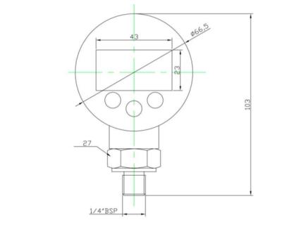Digitale manometer 0-600 bar 1/4
