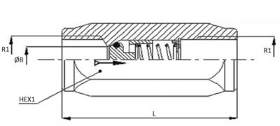 RVS terugslagklep 3/8'' BSP met openingsdruk 2,5 bar