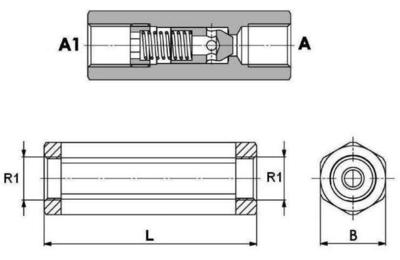 Terugslagklep 3/8'' BSP met openingsdruk 2,5 bar