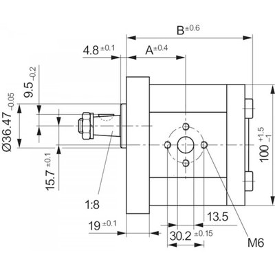 4 cc Bosch Rexroth tandwielpomp rechts met 1:8 conische as